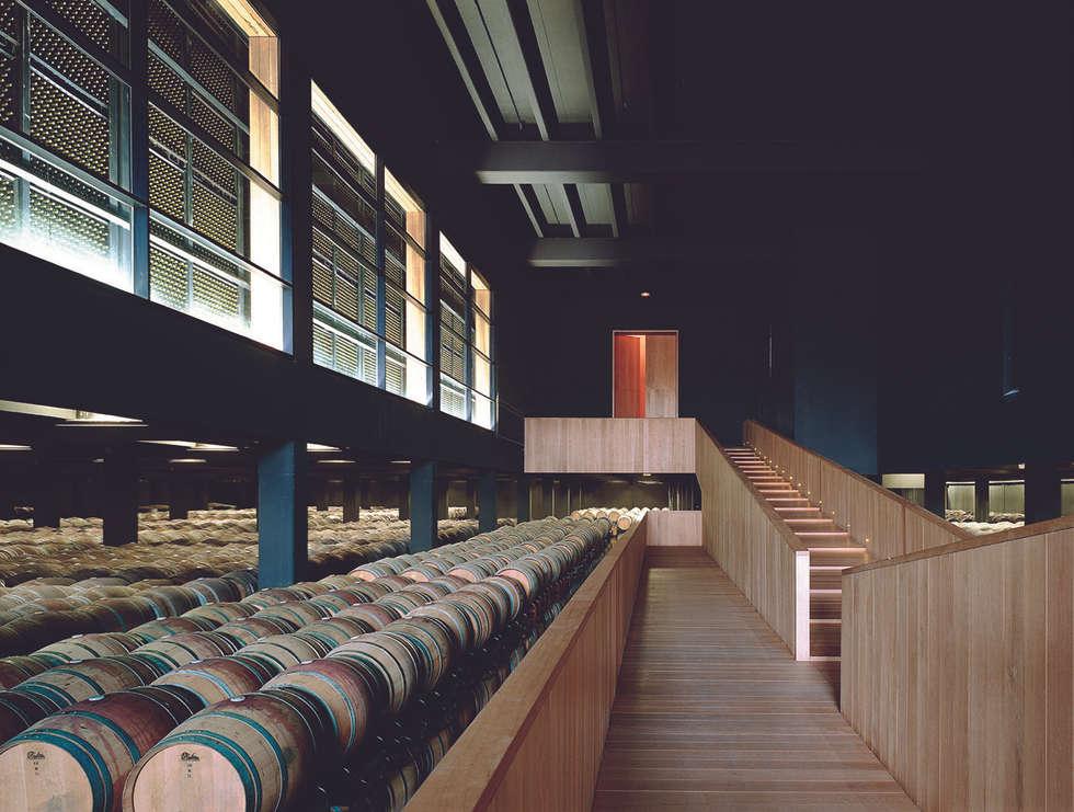 Bodegas de vino de estilo minimalista por Ignacio Quemada Arquitectos