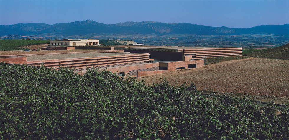 minimalistic Wine cellar by Ignacio Quemada Arquitectos