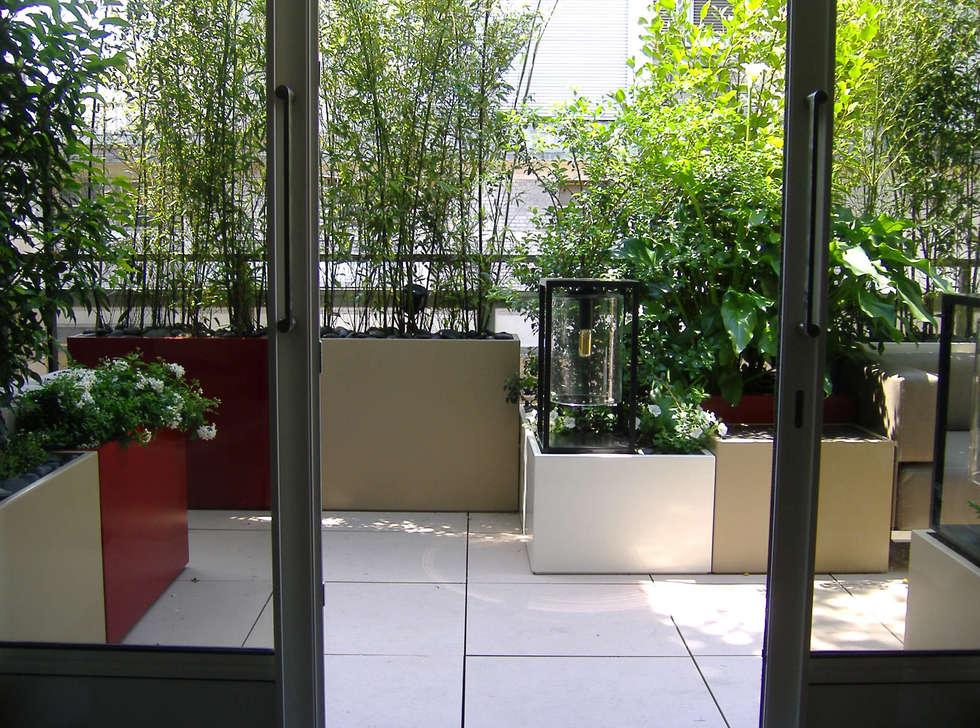 Bacs Image'In : Aménagement balcon - terrasse sur mesure: Jardin d'hiver de style  par ATELIER SO GREEN