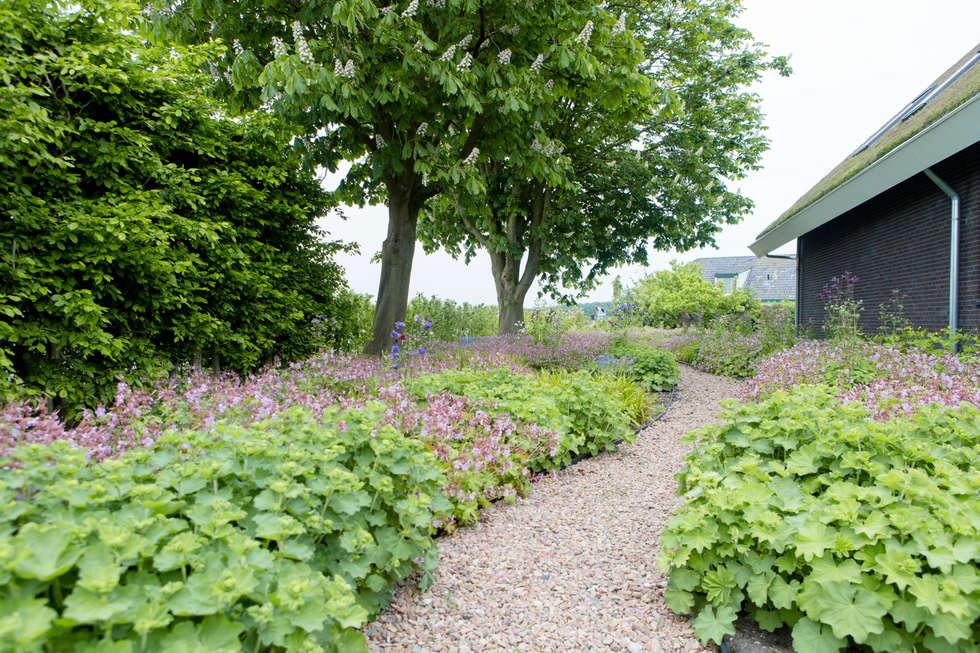 Vaste Planten Tuin : Vaste planten tuin in houten: landelijke tuin door mocking hoveniers