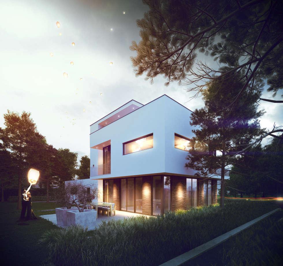 Keuken/woonkamergevel: Vrijstaand woonhuis voor Elisabeth & Hugo:   door Archivice Architektenburo