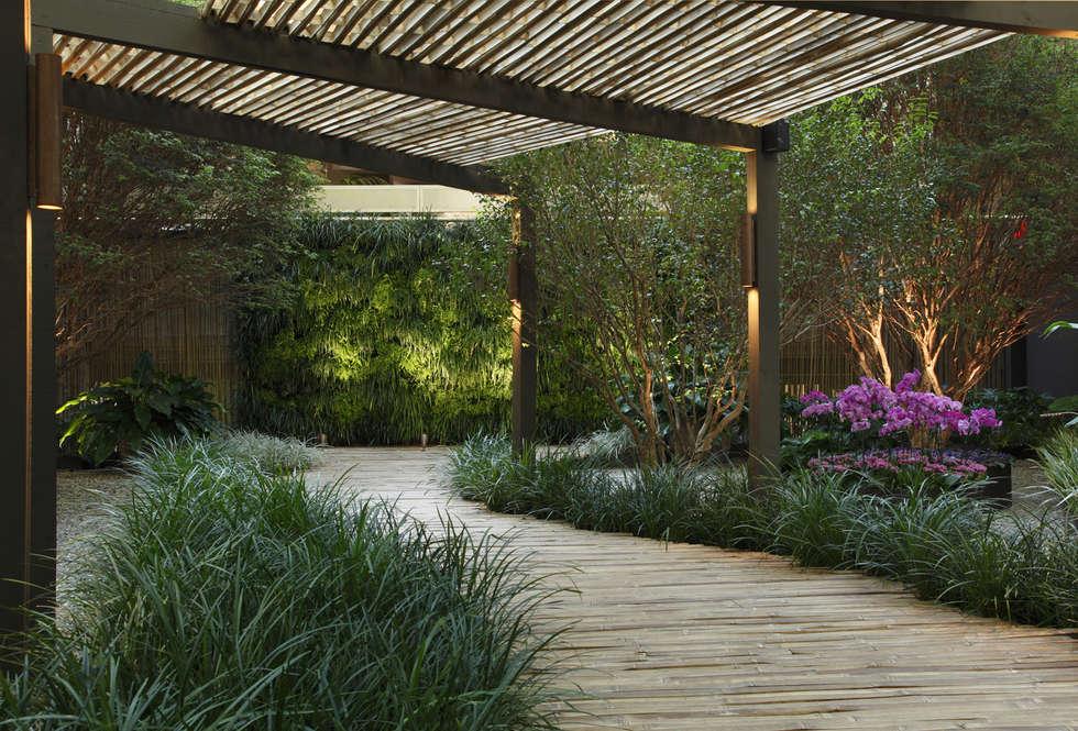 Fotos de decoraci n y dise o de interiores homify for Jardines minimalistas con bambu