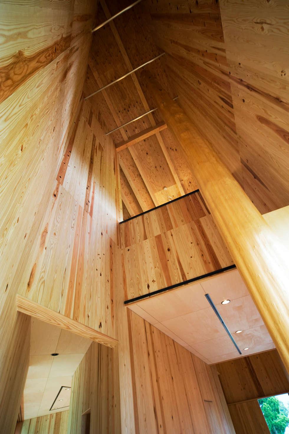 オーストラリア・ハウス: 山本想太郎設計アトリエが手掛けた壁です。