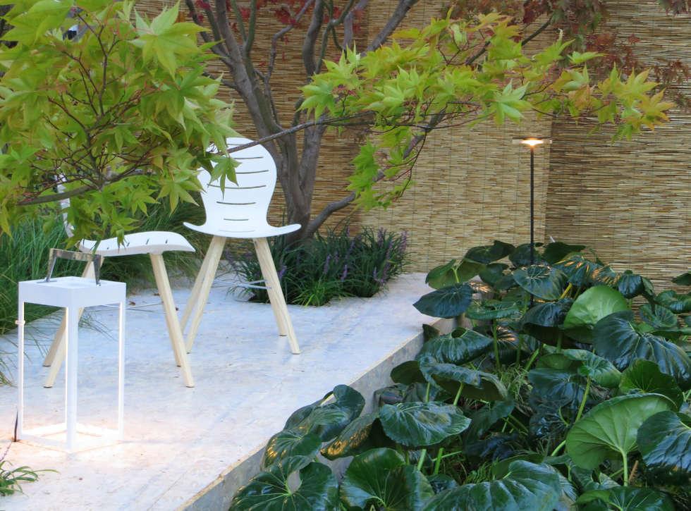 Farfugliando fra Farfugium. Allestimento per Trifolia - Arona .: Giardino in stile in stile Minimalista di MASSIMO SEMOLA PROGETTAZIONE GIARDINI MILANO