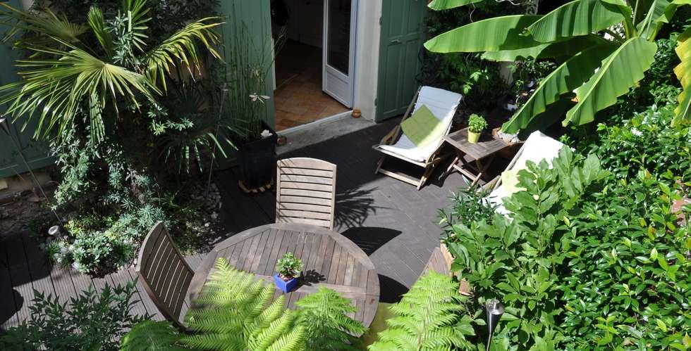 Jardin exotique en coeur de ville: Jardin de style de style Tropical par Taffin