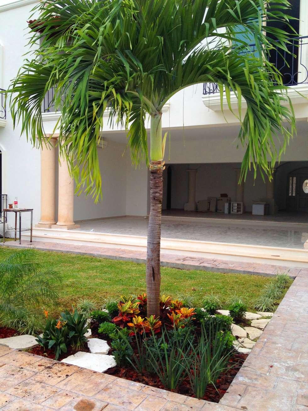 Casa cp 34 jardines de estilo moderno por ecoentorno for Decoracion de jardines de casas