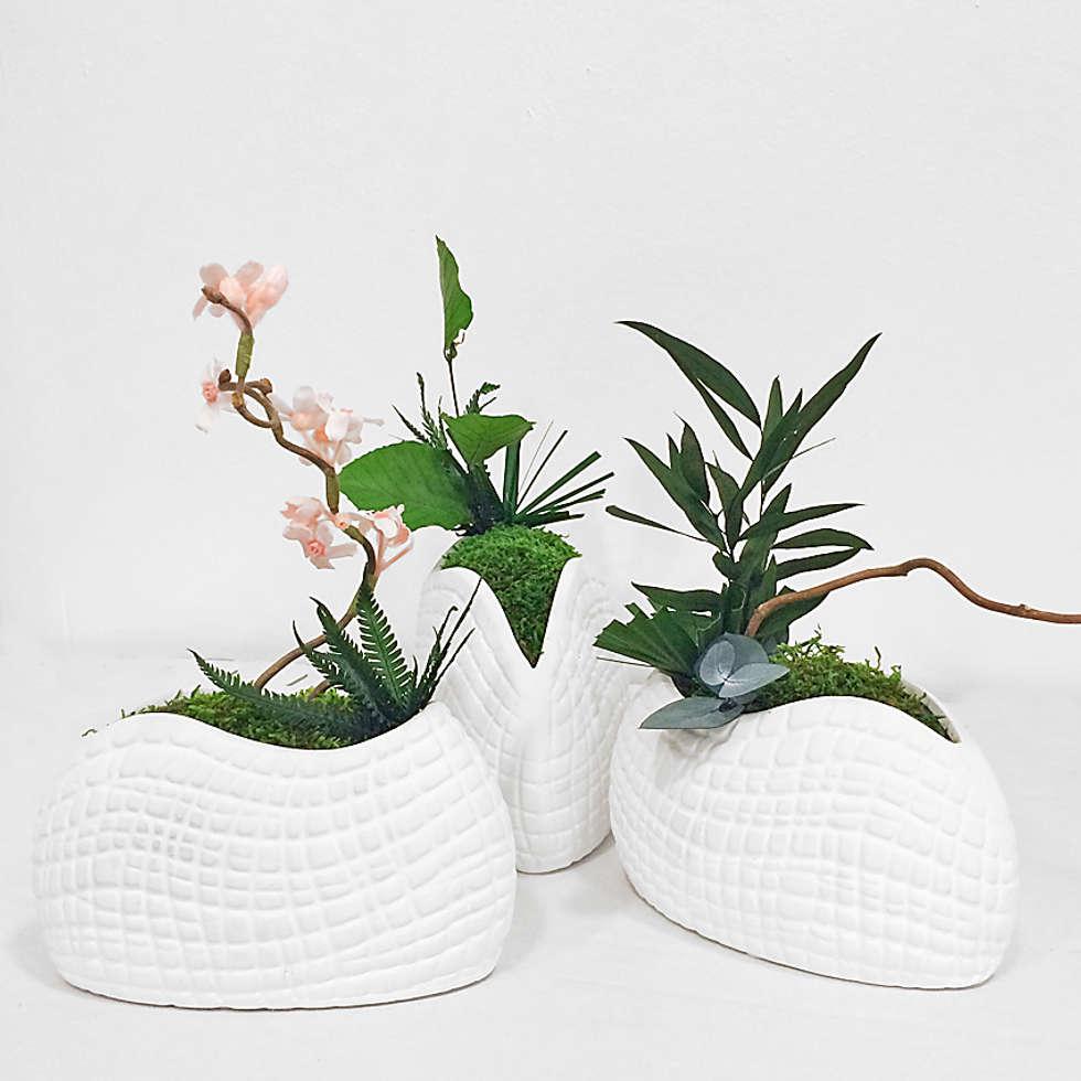 Design végétal: Salon de style de style eclectique par Adventive