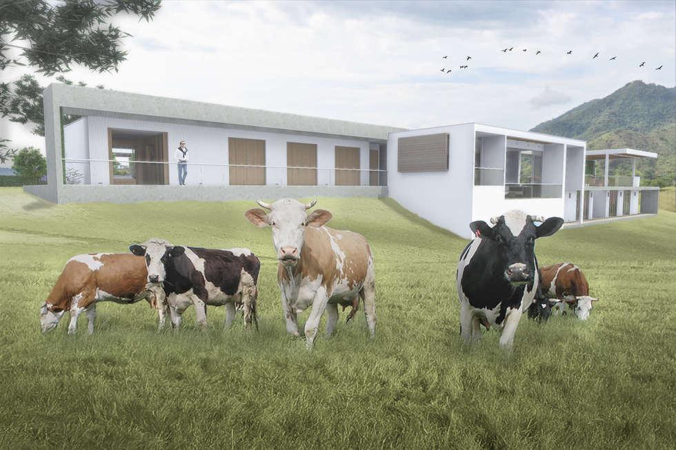 Fachada Posterior: Casas de estilo minimalista por Ar4 Arquitectos