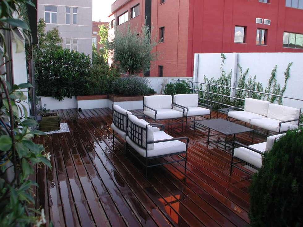Terraza madrid terrazas de estilo de estudio marta byrne for Paisajismo de terrazas