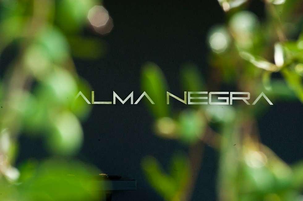 Casa in legno Alma Negra: Case in stile in stile Moderno di Progettolegno srl