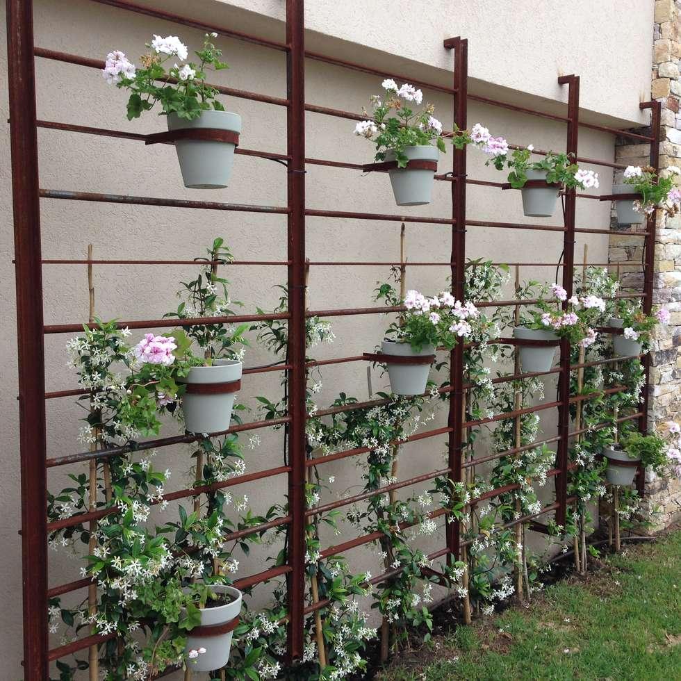 un jardin impactante: Jardines de invierno de estilo clásico por BAIRES GREEN