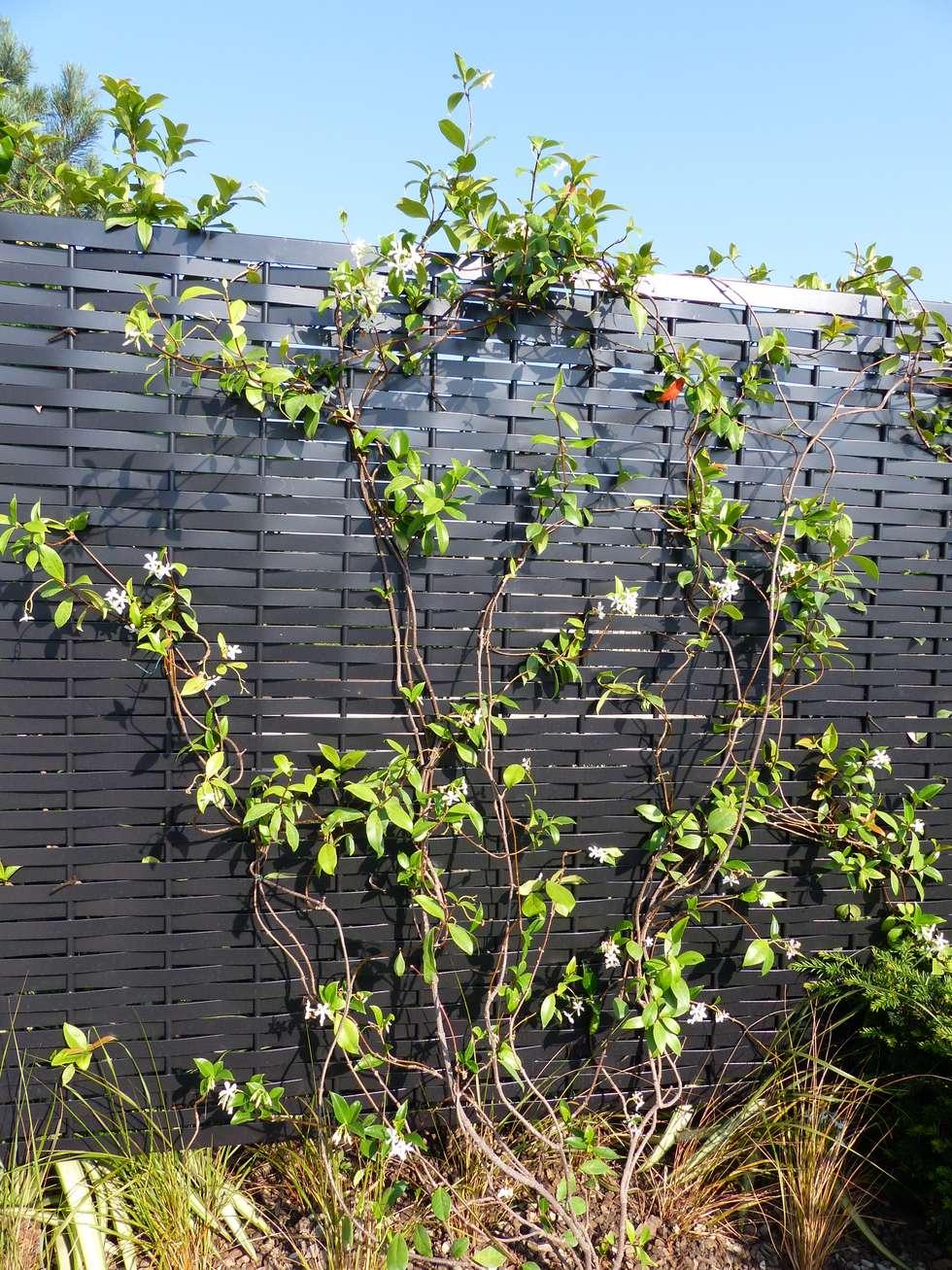 Palissade tressés The Peninsula Paris: Terrasse de style  par Fence Paris