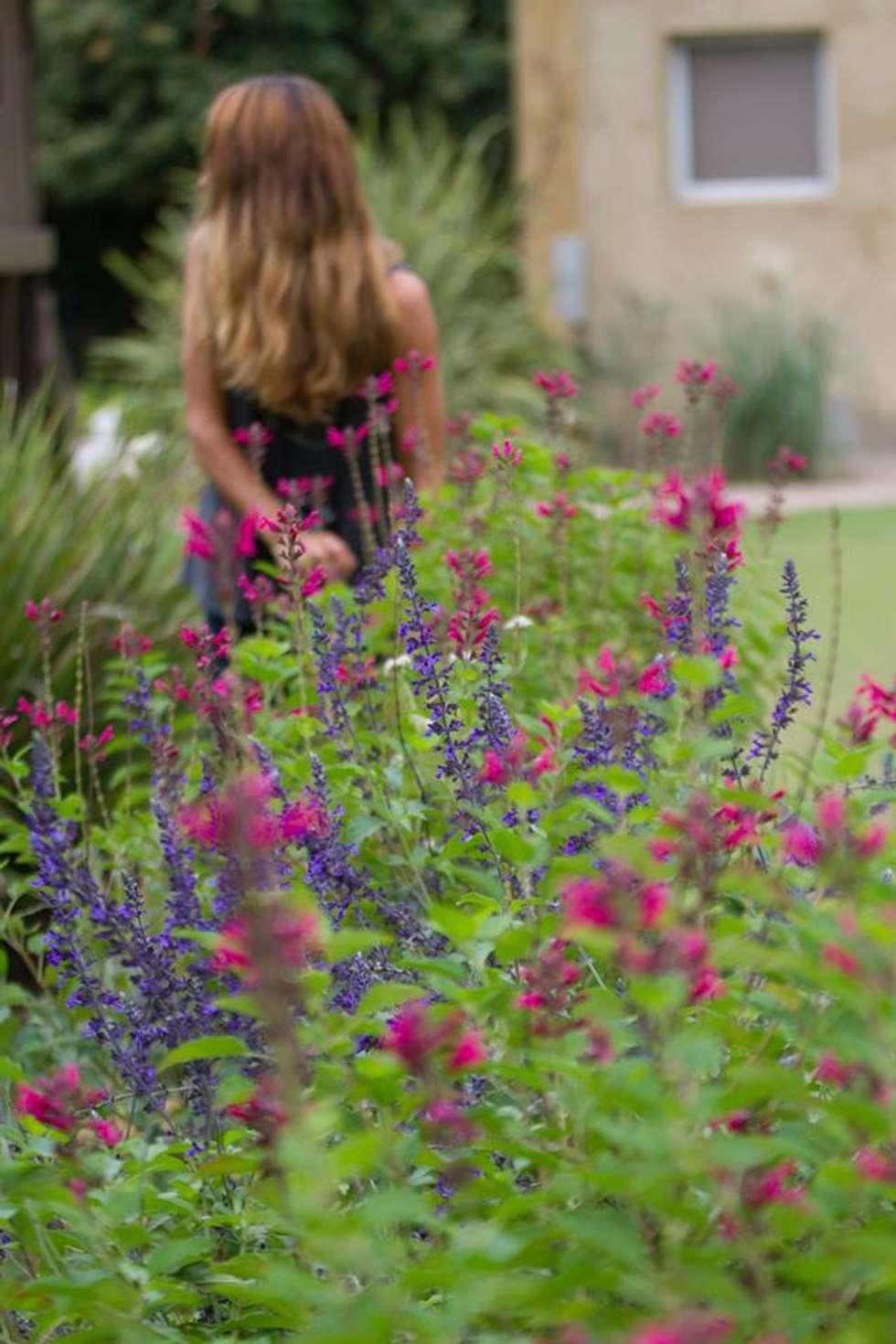 Ph Diego Ocampo https://www.facebook.com/diegoocampo.fotografia?fref=ts: Jardines de estilo moderno por LAS MARIAS casa & jardin