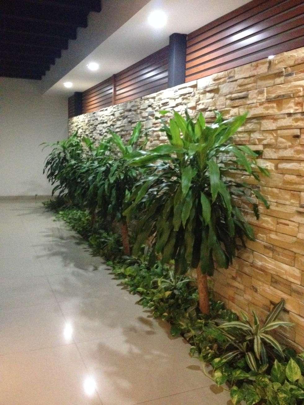 Fotos de decora o design de interiores e remodela es - Autoarq paisajismo ...