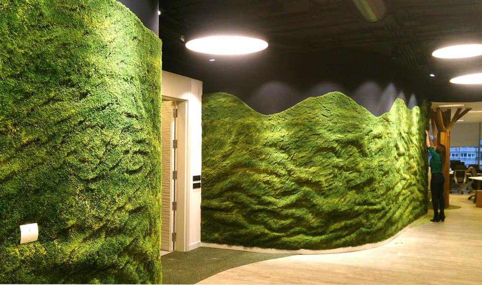Fotos de decora o design de interiores e reformas homify for Oficina qualitas auto madrid
