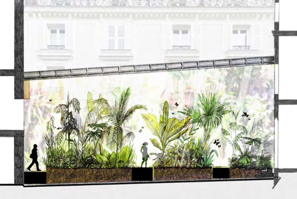 Serre tropical: Musées de style  par Fertiles