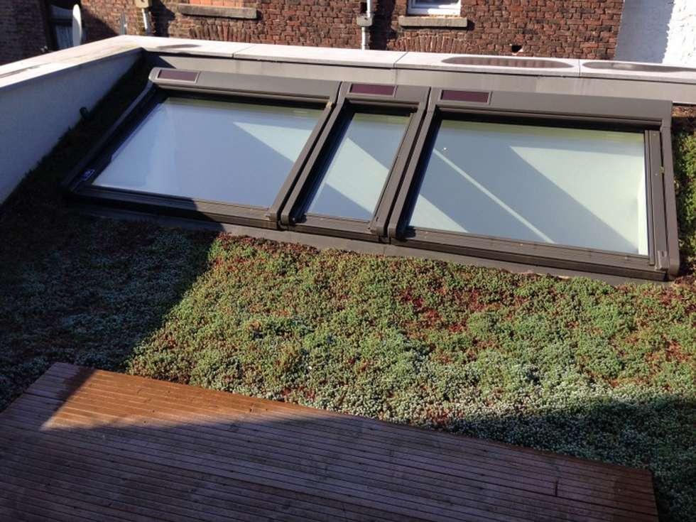Toiture verte de l'annexe arrière: Maisons de style de style Classique par Bureau d'Architectes Desmedt Purnelle