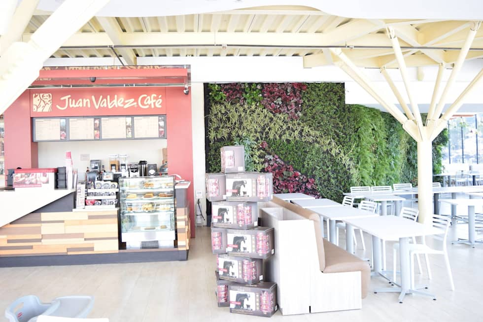 Muro verde Juan Valdez: Jardines de estilo moderno por Verde & Verde Ingenieros & Arquitectos SAS