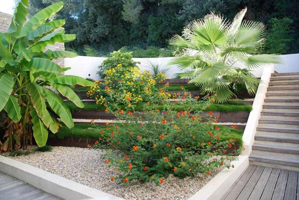 Un patio exotique: Jardin de style de style Méditerranéen par JARDIN GECKO