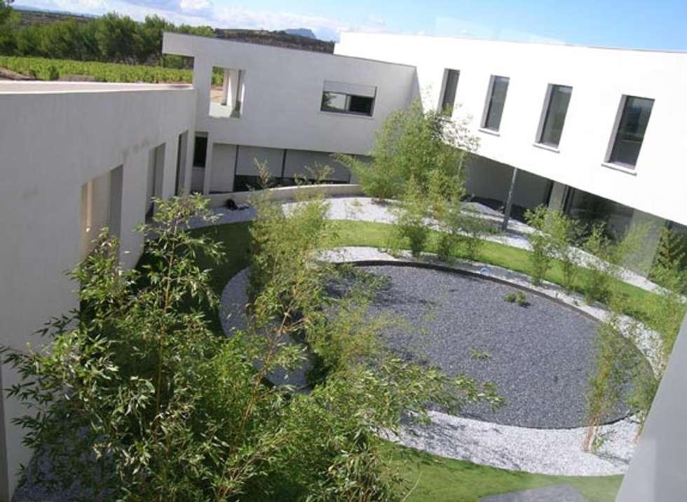 Un patio contemporain: Jardin de style de style Méditerranéen par JARDIN GECKO