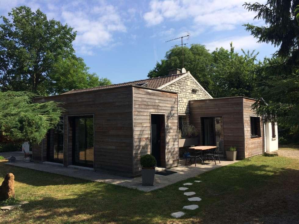 Vue générale - 5 ans après: Maisons de style de style Moderne par Olivier Olindo Architecte