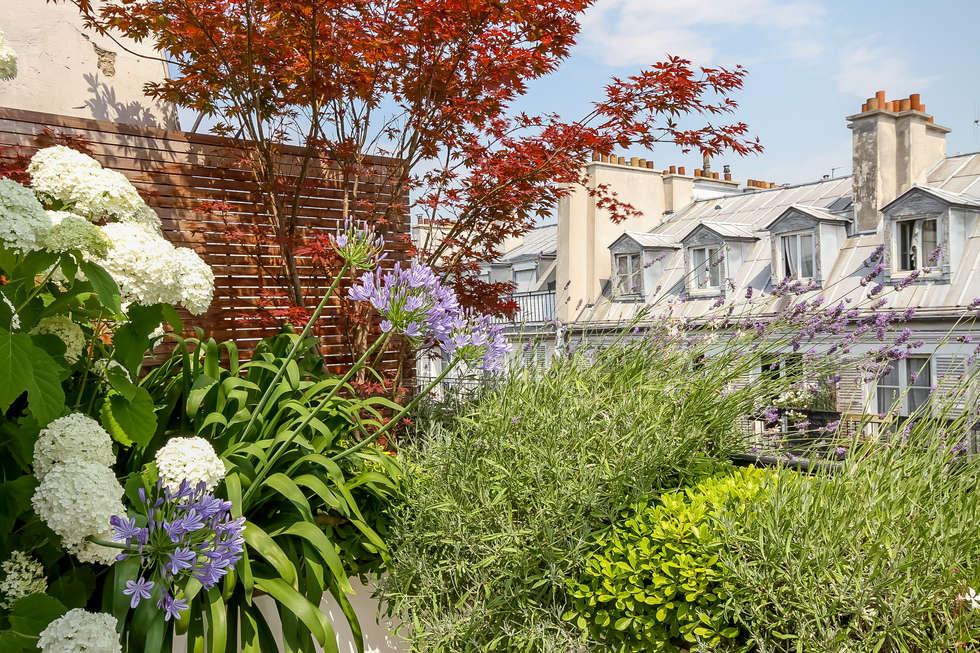 Terrasse Paris Rambuteau Terrasses des Oliviers : Terrasse de style  par Terrasses des Oliviers - Paysagiste Paris