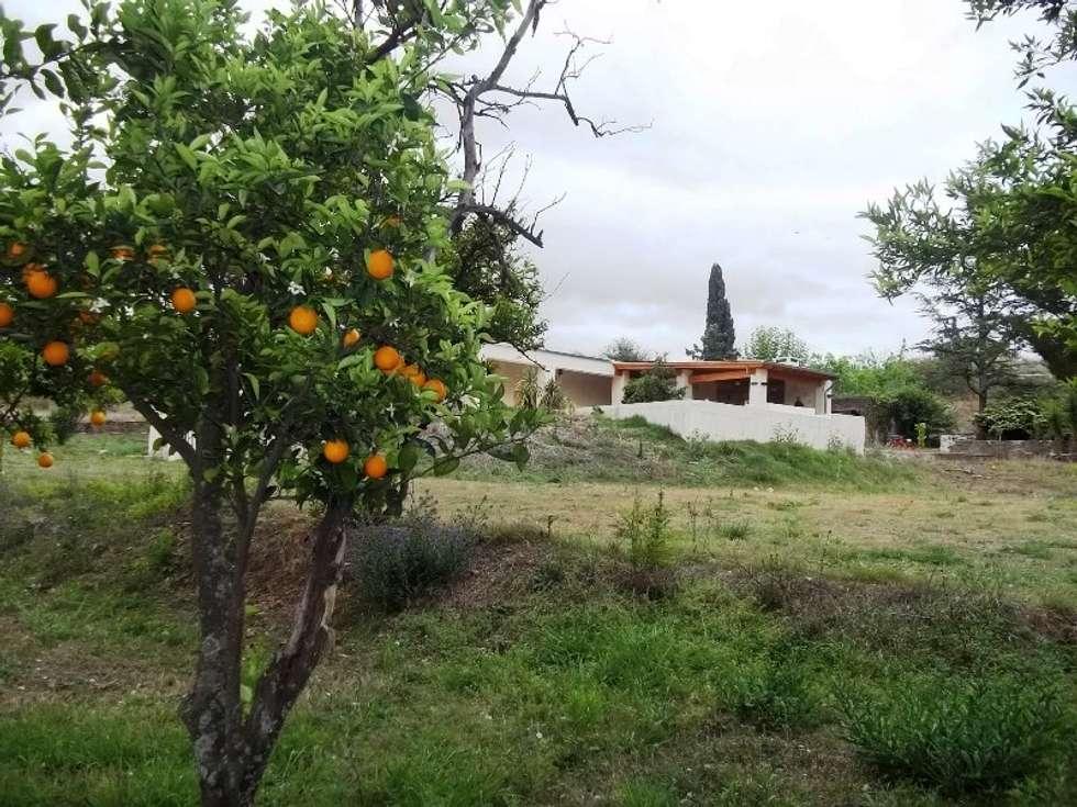 Vista desde el parque: Jardines de estilo colonial por Liliana almada Propiedades