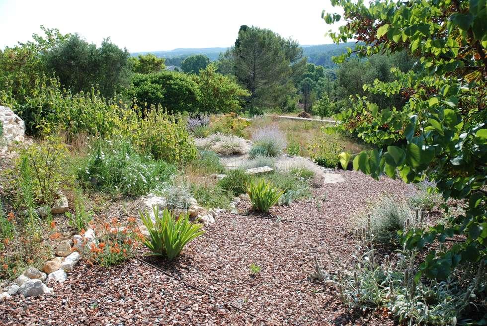 Jardin en pente: Jardin de style de style Méditerranéen par JARDIN GECKO