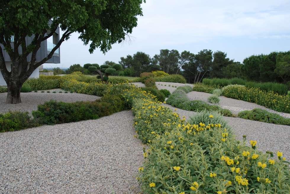 Vagues végétales: Jardin de style de style Moderne par JARDIN GECKO