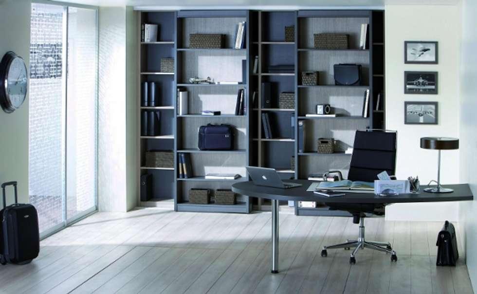 Bureau chic et spacieux bureau de style de style moderne par