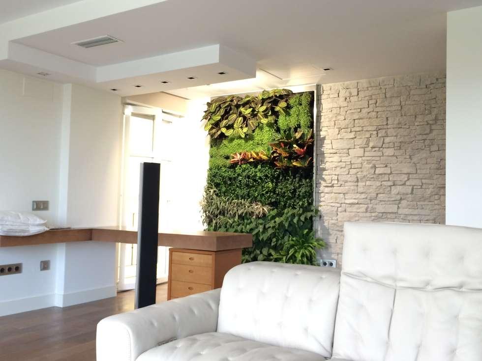 Fotos de decoraci n y dise o de interiores homify for Jardin vertical sevilla