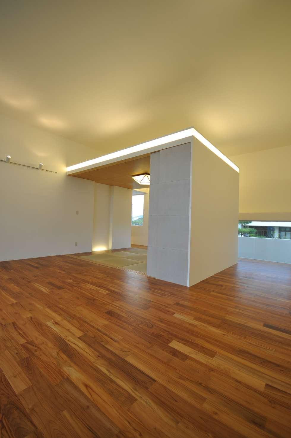 HG-HOUSE: 門一級建築士事務所が手掛けたリビングです。