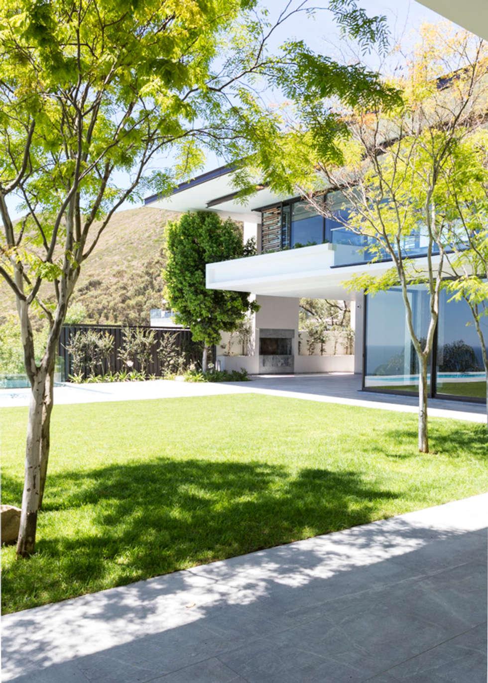 Garden: modern Garden by Jenny Mills Architects