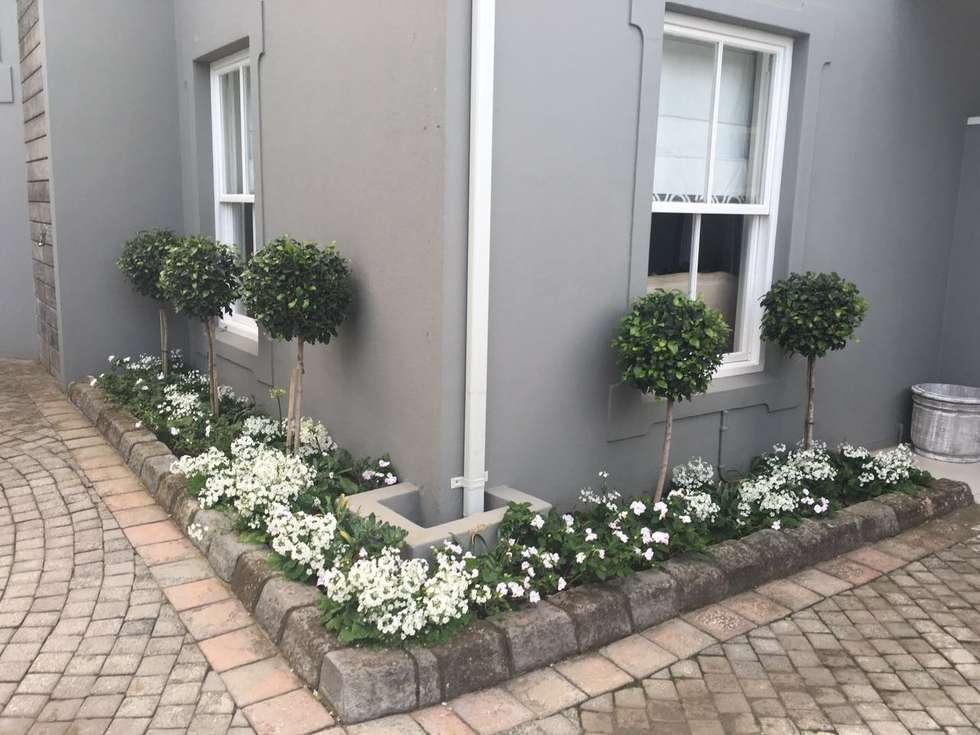 Near the entrance: classic Garden by Helen Sparg Landscape Designer