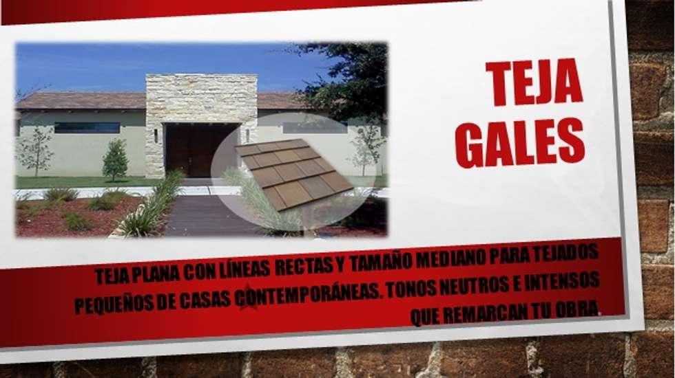 """TEJAS PLANAS """"GALES"""": Casas de estilo moderno por ENFOQUE CONSTRUCTIVO"""