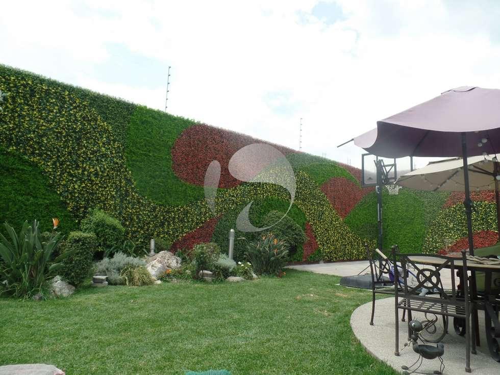 Ideas im genes y decoraci n de hogares homify for Diseno de muros verdes