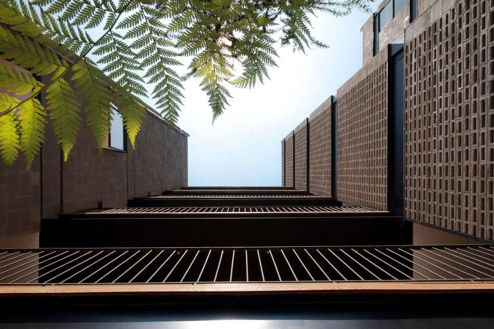 Pasillos de Comunicación: Pasillos y recibidores de estilo  por Wolff Arquitectura
