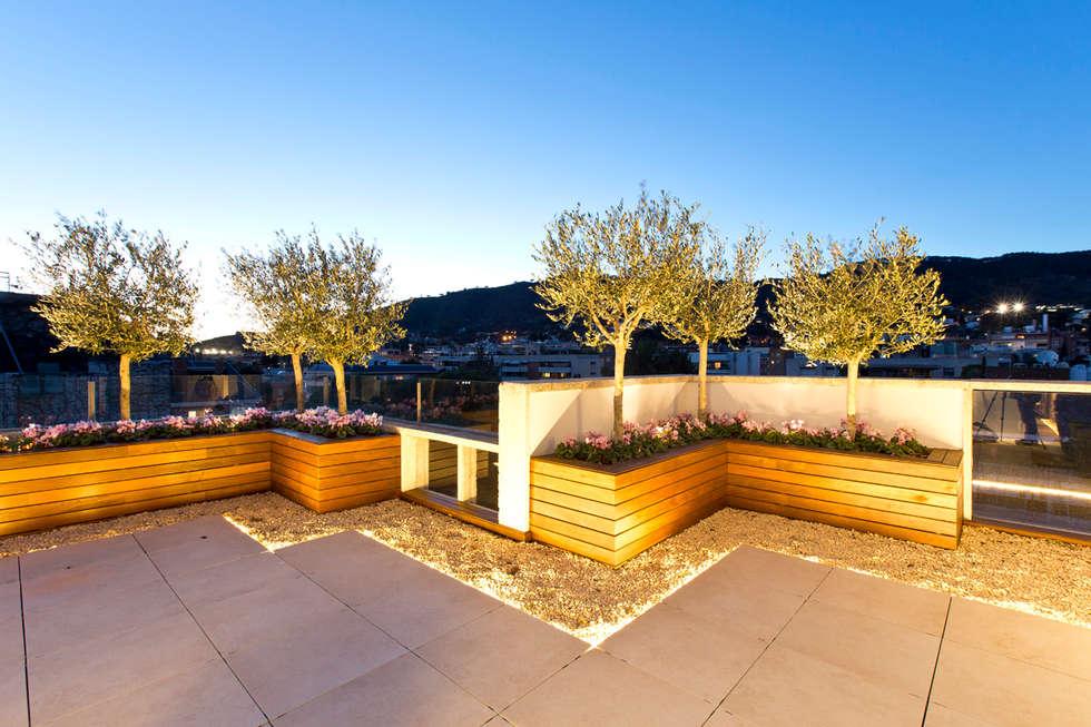 Mimari fikirleri yeniden dekorasyon yeniden - Conillas garden center ...