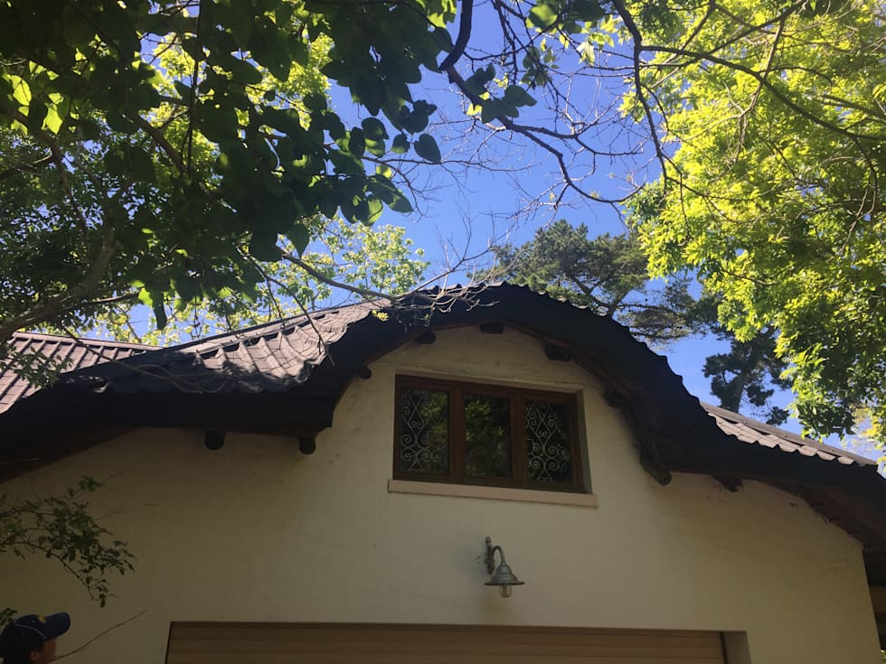 Curved dorma window in flexible roof tiles: modern Houses by Cintsa Thatching & Roofing
