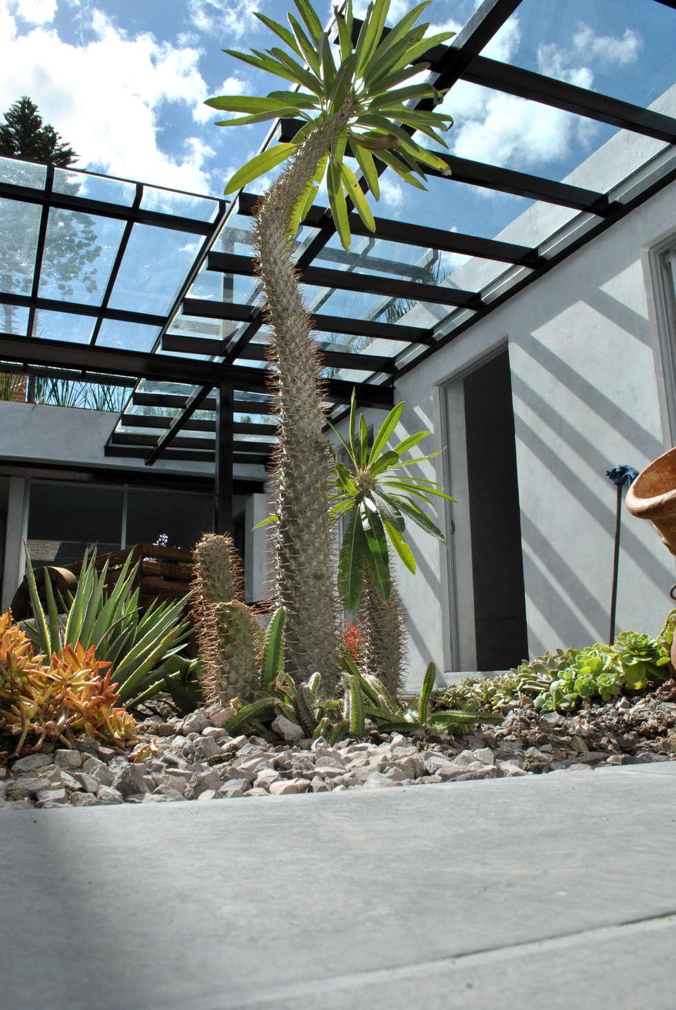 DETALLE JARDIN Y CUBIERTA : Espacios comerciales de estilo  por Novhus Oficina de Arquitectura