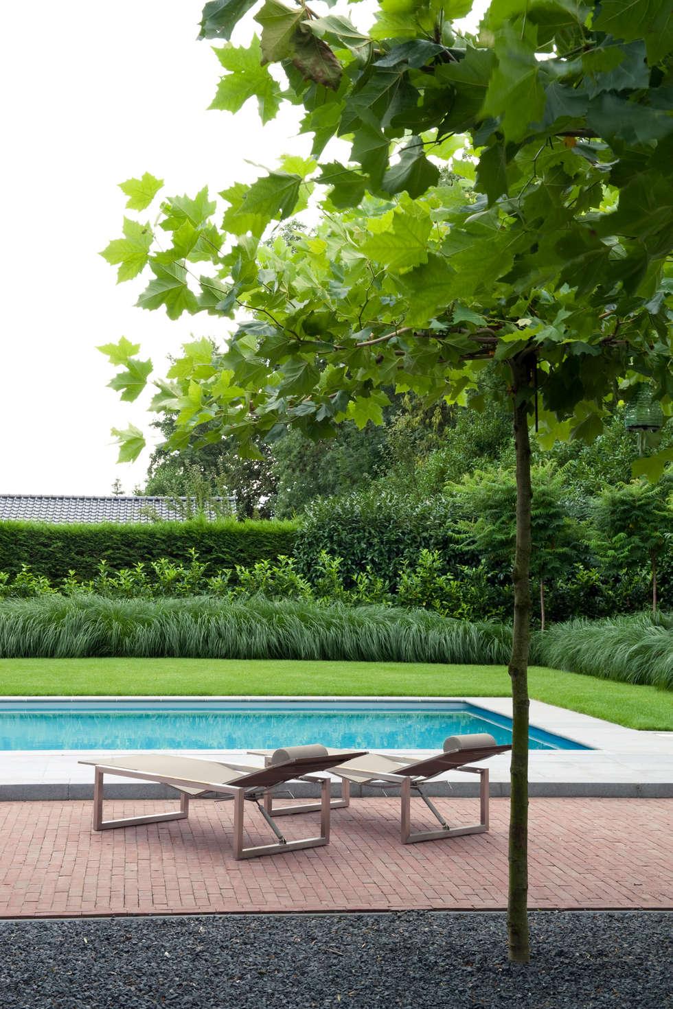 Luxe tuin met zwembad modern zwembad door jaap sterk for Tuin met zwembad