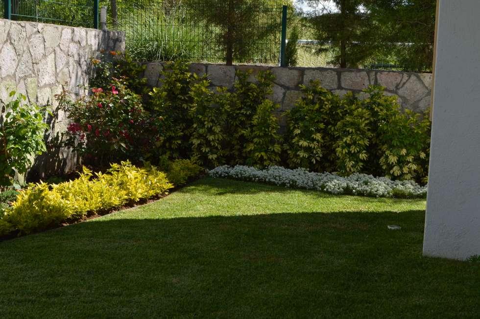 Paisajismo jardines casas paisajismo diseo y mantencion for Paisajismo jardines modernos