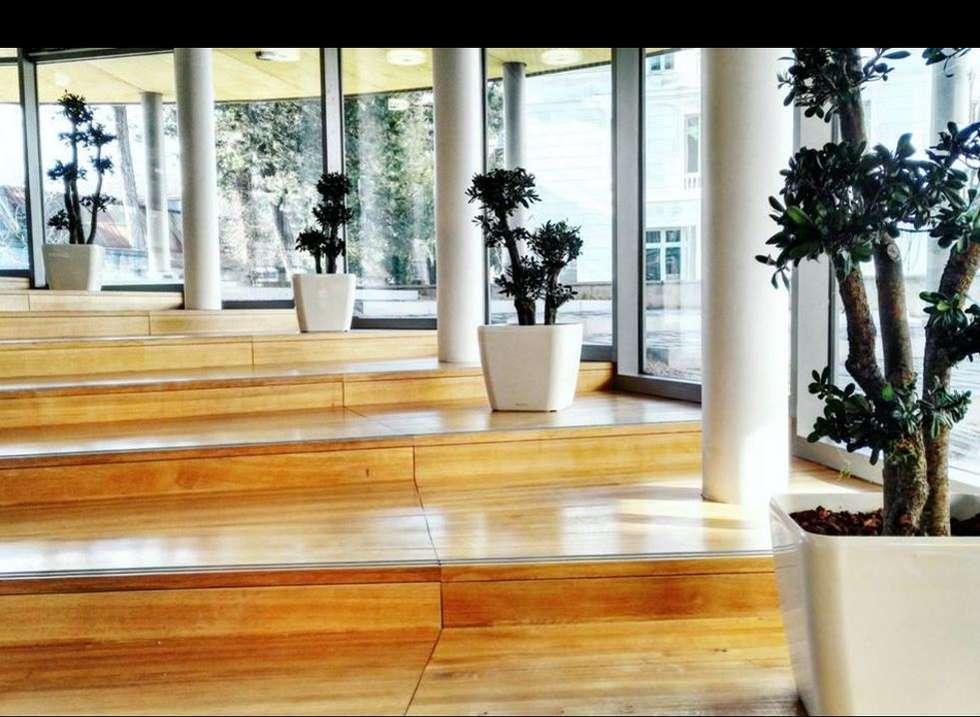 Plantes stabilisées: Bureaux de style  par Green Time