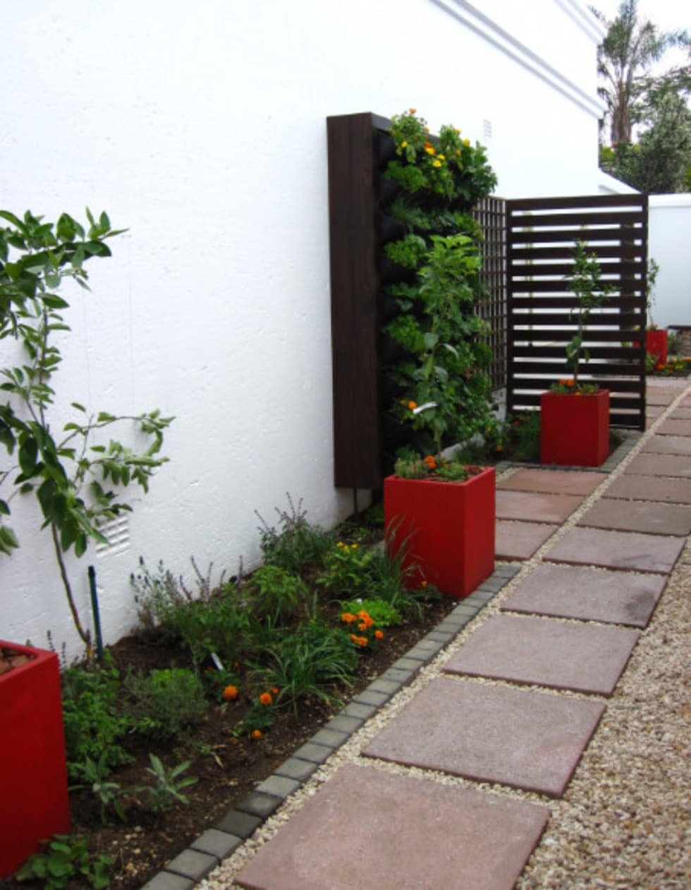 Small Garden spaces: modern Garden by Young Landscape Design Studio