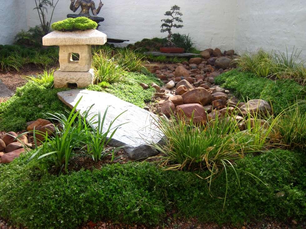 Small garden spaces: modern Garden by Young Landscape Design Studio