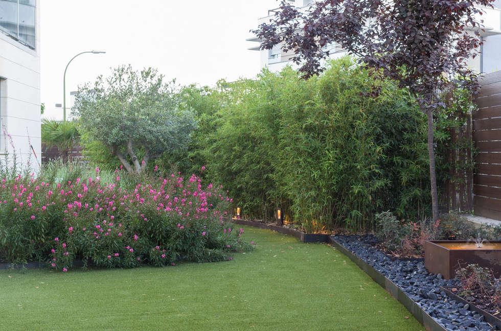 Fotos de decoraci n y dise o de interiores homify for Jardines sin plantas
