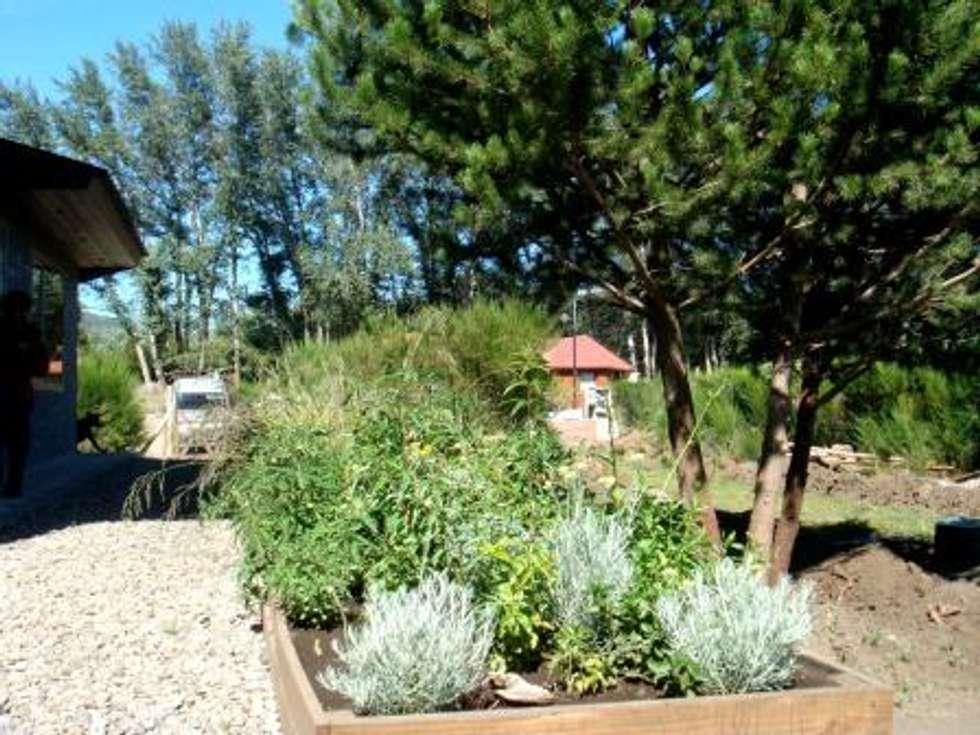Sector de aromáticas: Jardines de estilo rural por Pell Paisajismo