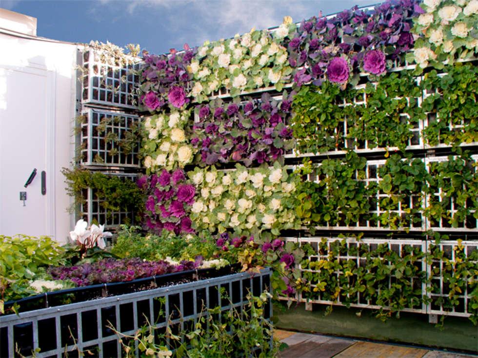 Jardines de estilo moderno por AIR GARDEN