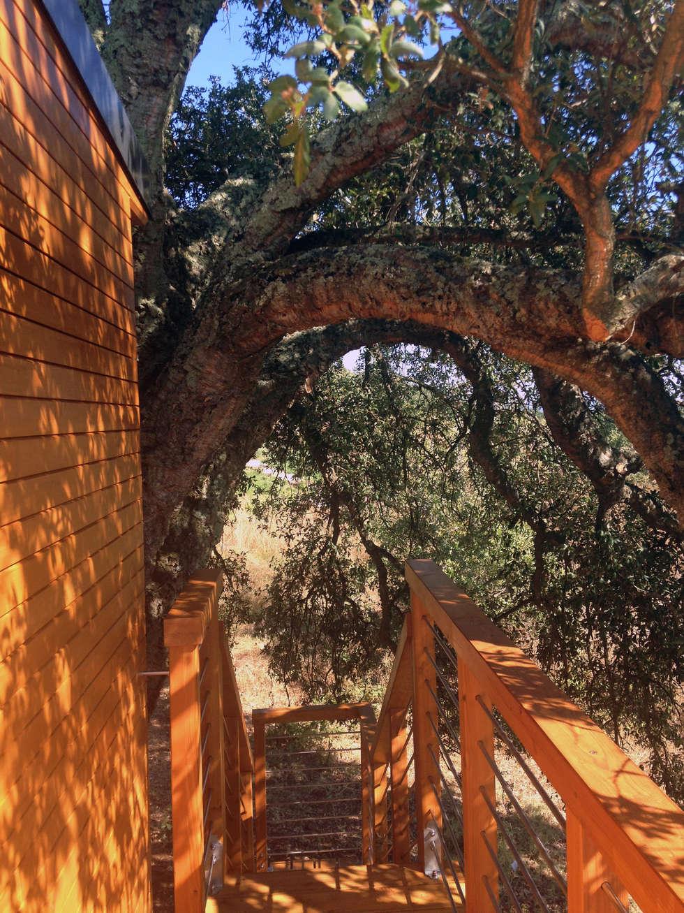 Nido alla sughera: Casa di legno in stile  di Livingreen - Architetto Barbara Tavoso
