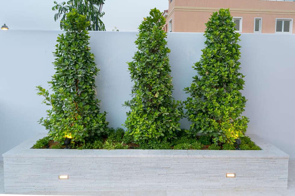 بركة مائية تنفيذ Hortus Landscaping Works LLC